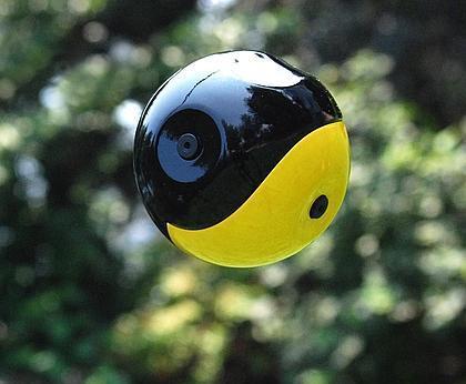 squito camera